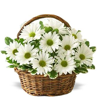 White_Daisy_Basket