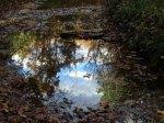 I love reflections!