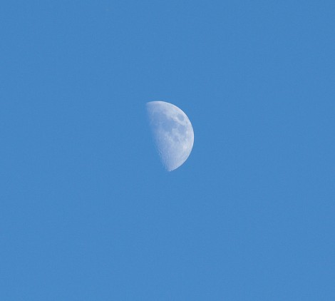 No cat, no fiddle, not even a jumping cow, but oh what a moon!