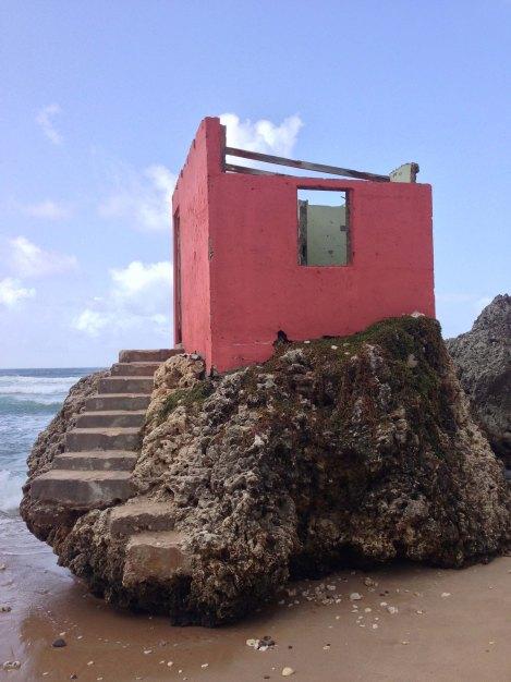 A little pink house lite