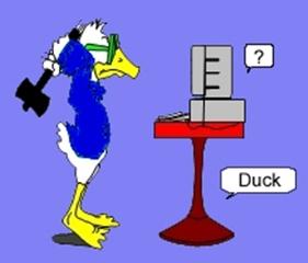 Duck back 2