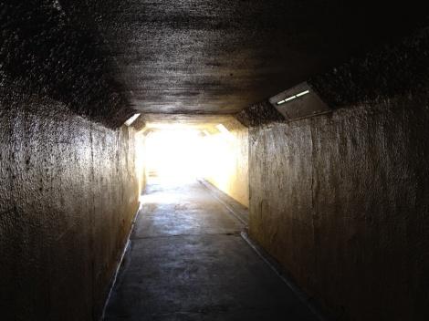 tunnel stephen-baum